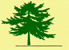 jdl_tree_icon_1.jpg